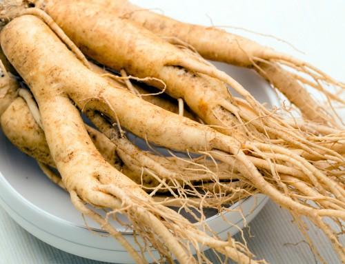 Ginseng: la pianta umana che resuscita. Benefici, usi e controindicazioni.