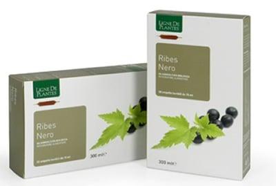 Ribes Nero BIO