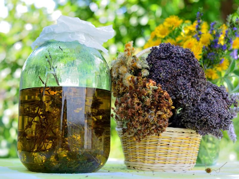 Solstizio d'estate: alchimia delle piante e del sole