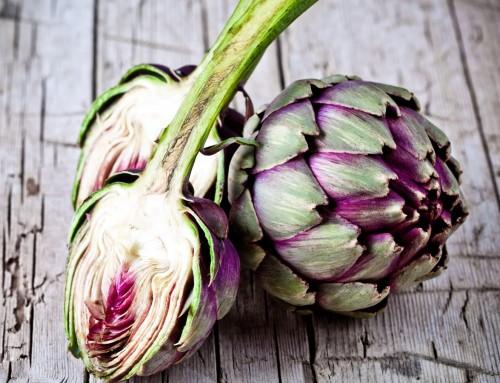 Carciofo: la pianta preferita dai vecchi medici di famiglia