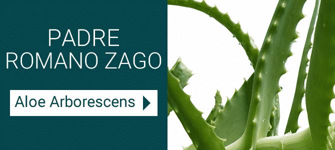 Galenia Aloe Arborescens Frei Romano Zago