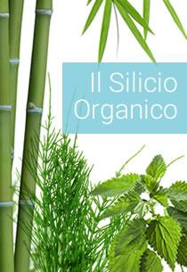 Guida Completa Silicio Organico